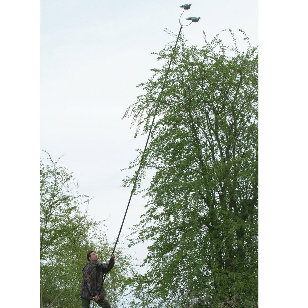 Ducatillon m t pigeons chasse - Comment faire fuir les pigeons ...
