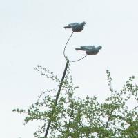 Embout supplementaire pour Mât à pigeons