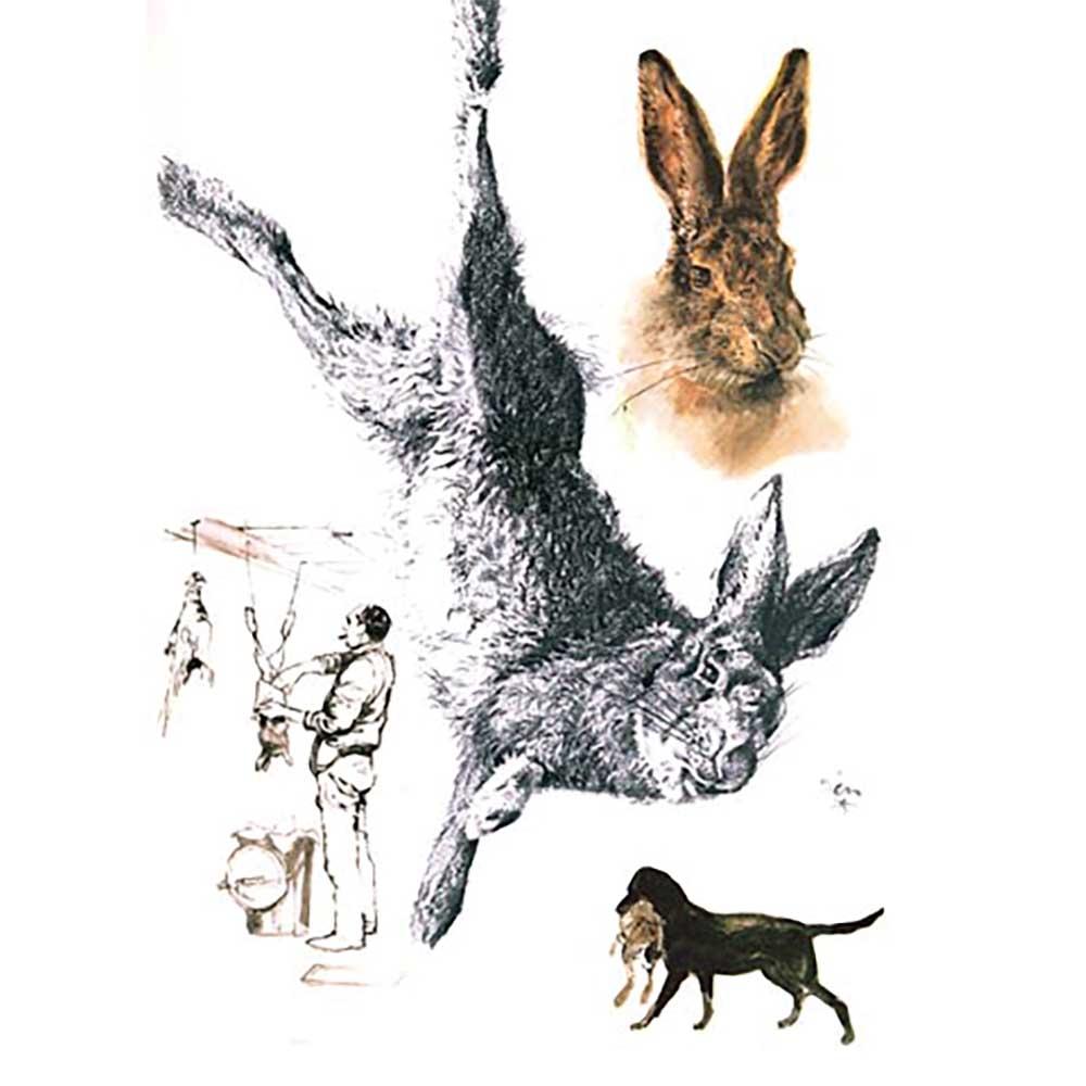 Ducatillon livre dessins de chasse par rien poortvliet - Dessin de chasse ...