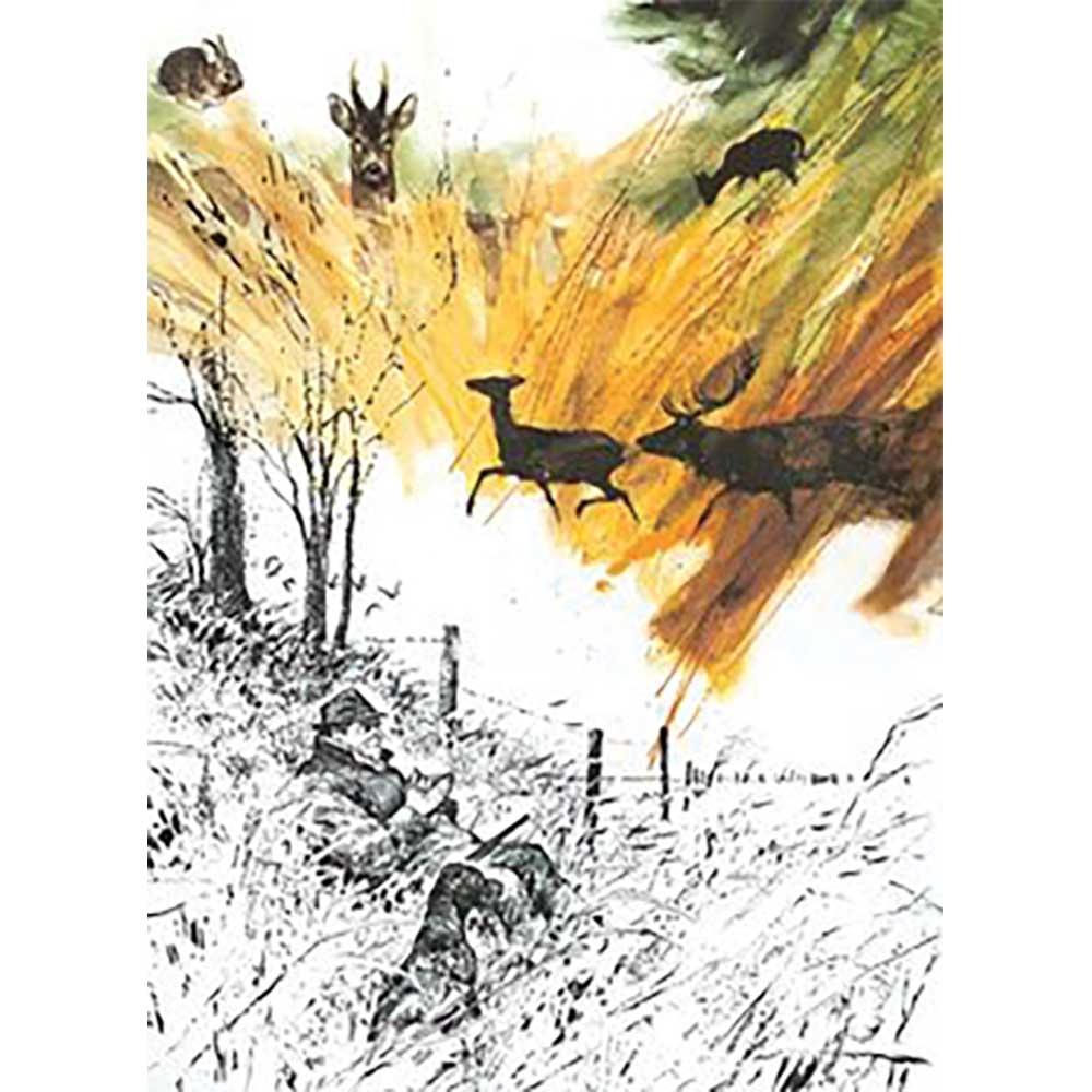 Boutiques ducatillon belgique livre dessins de chasse - Dessin de chasse ...