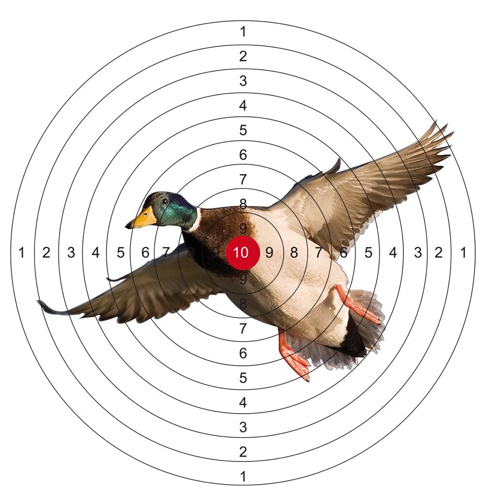 tir aux canard