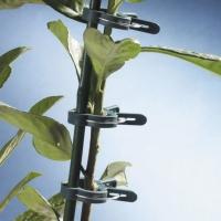 12 Clips à Tuteur pour Plantes