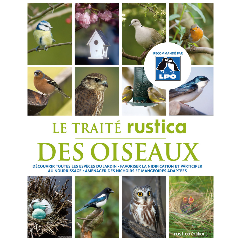 Ducatillon livre trait rustica des oiseaux du jardin for Jardin des oiseaux