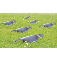 Pack de 6 appelants pigeons 3D
