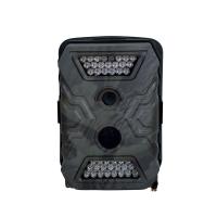 Détecteur photographique de mouvement avec LEDs infrarouges