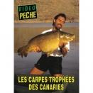 DVD : Les carpes, trophées des Canaries