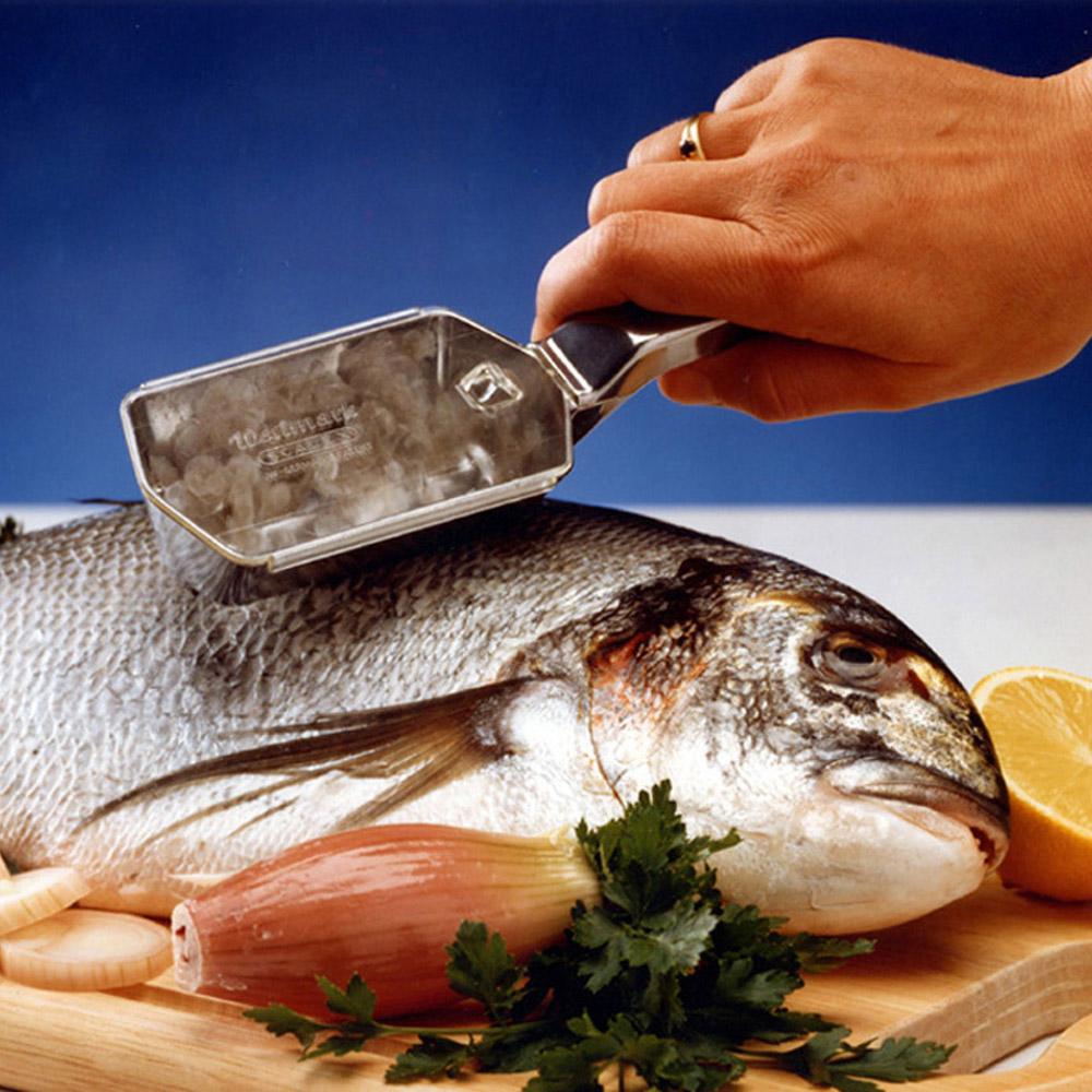 Ecailleur poisson 39 scalex 39 achat vente d 39 ustensiles for Poisson achat