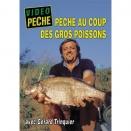 DVD : Pêche au coup des gros poissons