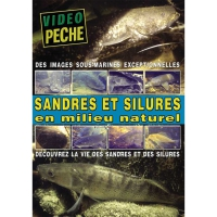 DVD : Sandres & silures en mileu naturel