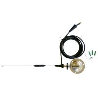 Antenne amplificatrice déportée pour détecteur