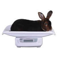 Balance à lapin 20kg
