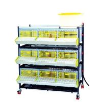 Cage engraissement cailles/perdrix 3 étages