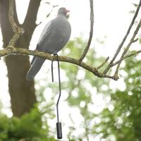 Contre-poids pour Appelant Pigeon