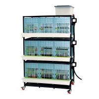 Cage poussin 3 étages, hauteur intérieure 40cm