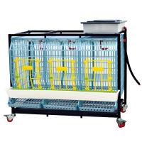 Cage reproducteurs/pondeuses Base  1 étage