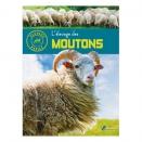 Elevage des moutons