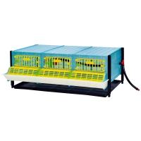 Cage d'engraissement cailles perdrix étage supplémentaire