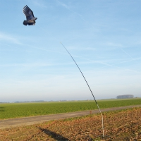 Mât pour cerf volant effaroucheur