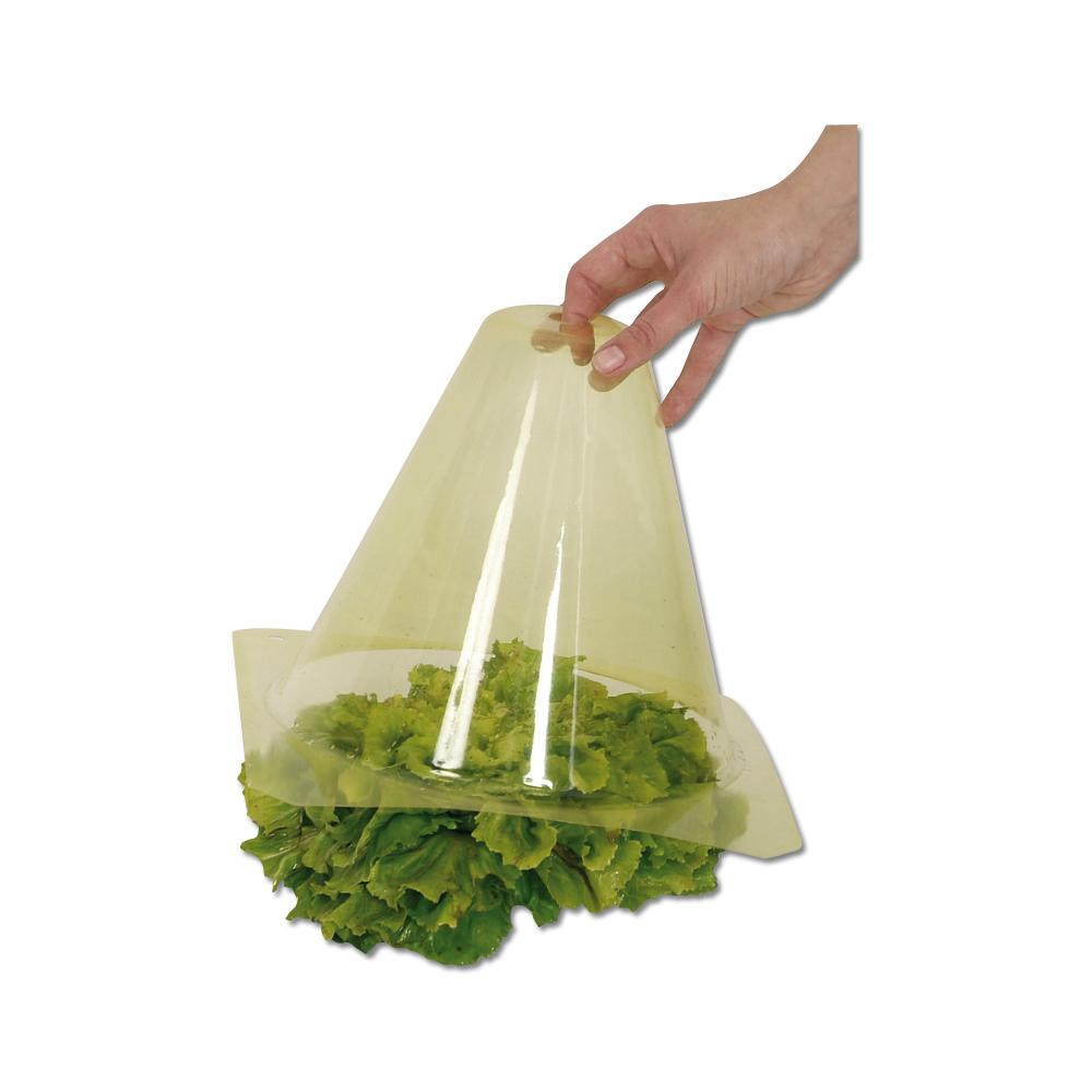 Jardin ducatillon 12 cloches de for age pour salades - Cloche en plastique transparent jardin ...