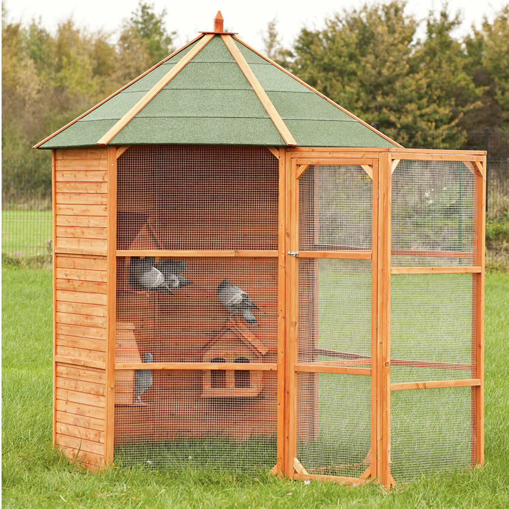 Ducatillon pigeonnier voli re hexagonal elevage for Voliere exterieur bois