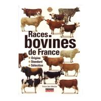 Races Bovines Française