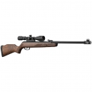 Carabine Gamo Hunter 440 AS + lunette