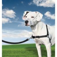 Harnais chien Easy Walk® noir