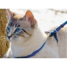 Harnais et laisse chat Easy Walk®