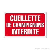 Panneau CUEILLETTE DE CHAMPIGNONS INTERDITE