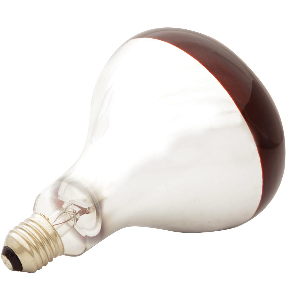 Ampoule Infrarouge Elevage Ducatillon