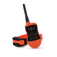 Système de dressage Sporttrainer 875 SportDog®