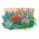 Le massif 'été fleuri' - 18 plantes vivaces -