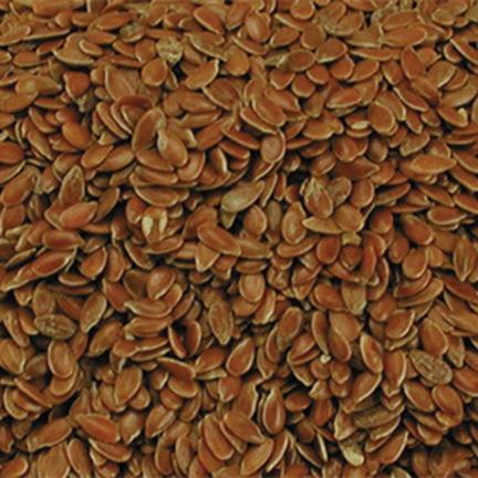 Graines de lin 1kg