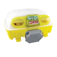 Couveuse Automatique River Systems Biomaster Egg Tech 49