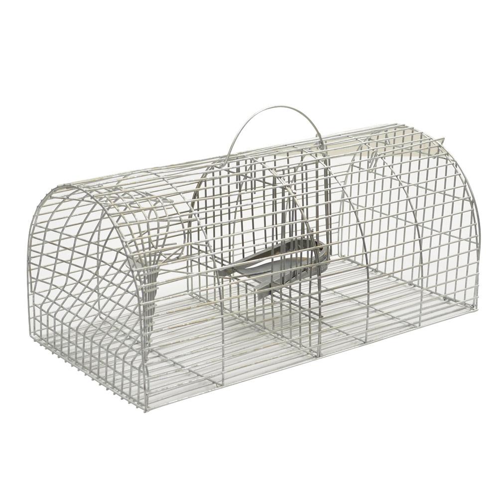 ducatillon nasse rats pi ges et r pulsifs. Black Bedroom Furniture Sets. Home Design Ideas