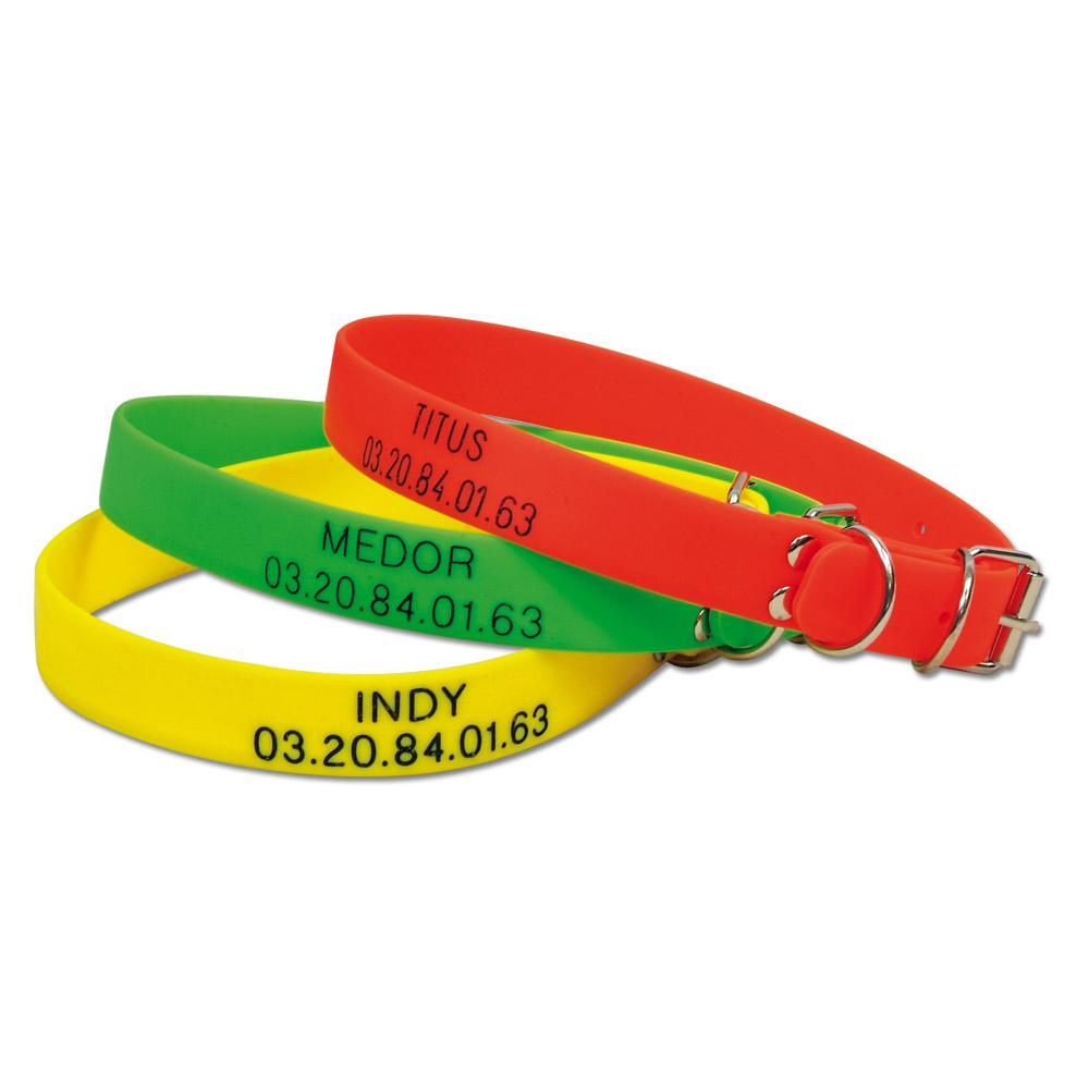 collier pour chien fluorescent