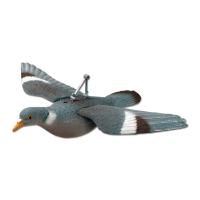 Appelant pigeon plein à ailes déployées
