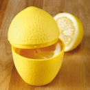 Boîte de Conservation Citron