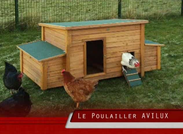 poulailler ducatillon